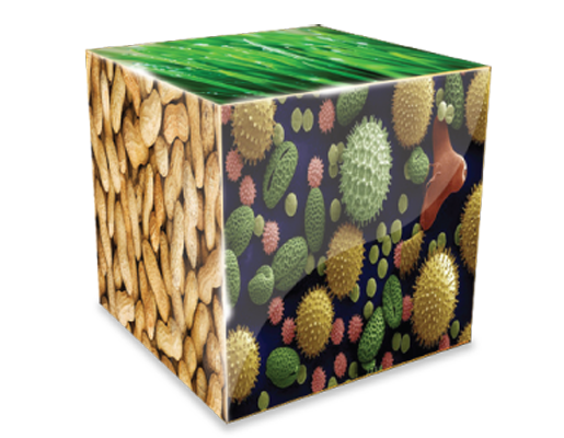 allergy-cube copy