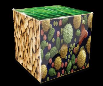 allergy-cube new
